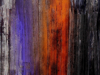 Eucalyptus arc-en-ciel 80 x 100 cm